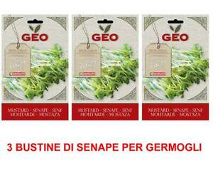 Offer 3 Packages Seed Bio Of Mustard For Sprouting 50GR Coldframe Campion