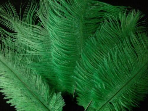 """5 Piezas Plumas De Avestruz Sombrerería /& Crafts 6-8/"""" Verde Esmeralda"""