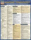Anatomy Terminology 9781423216322 by BarCharts Inc Poster