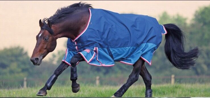 Shires Highlander Original Lite Light 0g Turnout Rug 7'3  Petrol  Turquoise bluee