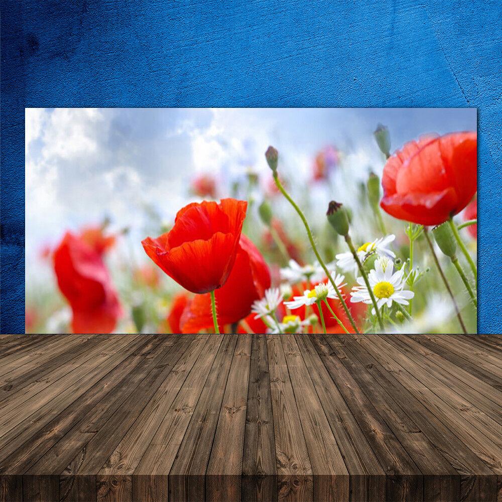 Crédence de cuisine en verre Panneau 120x60 Floral Marguerites Pavot