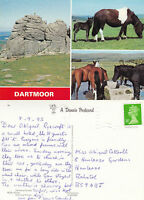 1993 MULTI VIEWS OF DARTMOOR DEVON COLOUR POSTCARD