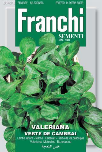 - Verte De Cambrai Corn Salad Lambs Lettuce Seeds Franchi Seeds of Italy