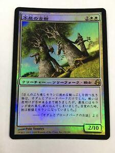 Foil Played MTG Morningtide Magic Indomitable Ancients