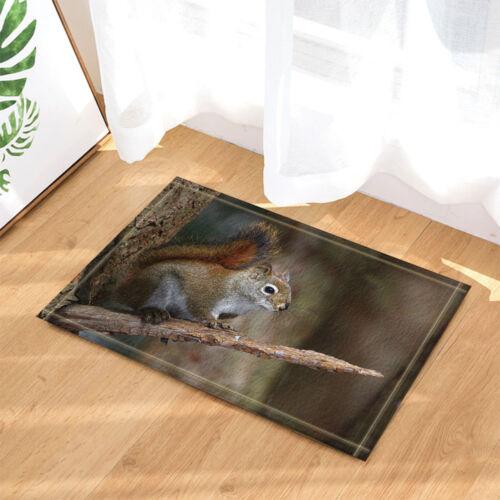 Cute squirrels animal Kitchen mat Bathmat Bathroom DoorMat carpet 40x60cm