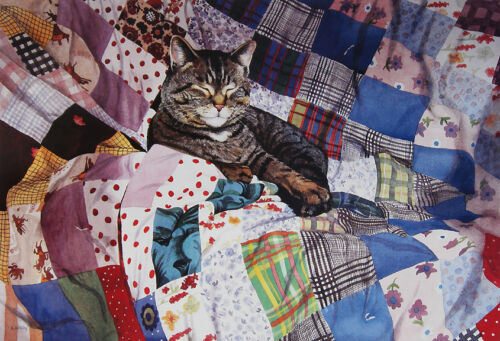 """poster Stephanie Woolley /""""Cat on a Crazy Quilt/"""" 18/""""h x 26.75/""""w image"""