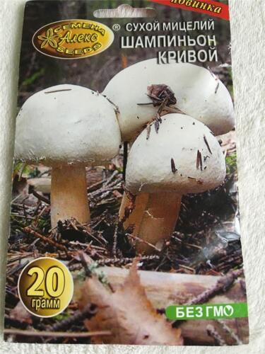 Dry mushroom spawn Champignon Seeds Spores 20 gram Garden MUSHROOM Spores