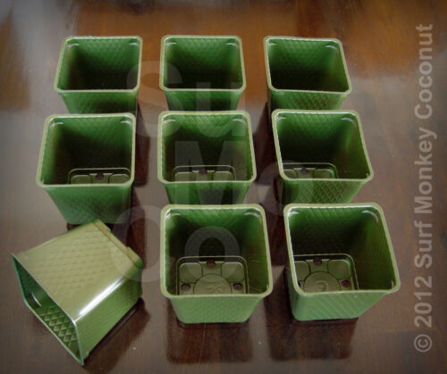 Nouveau Plastique Pépinière Plant Pots Vert conteneurs 5 GRATUIT graines étiquettes 36 Qté Lot