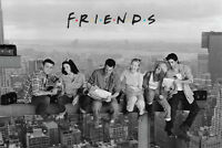 Friends Lunch On A Skyscraper Poster Hit Series David Crane Nbc Never Been Hung