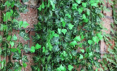 Hot 7.8 ft Artificial Plant Green Silk Ivy Leaf Garland Foliage Home Decor An363