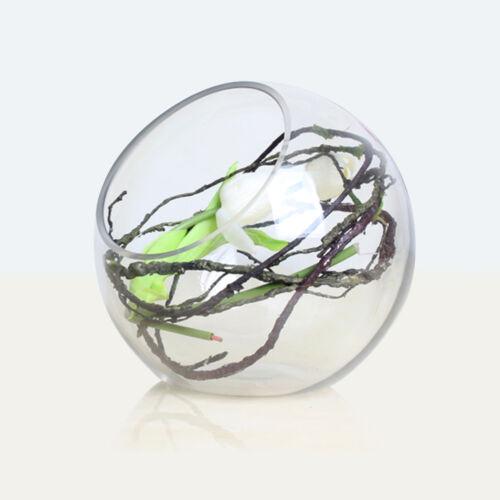 NUOVO Globe Palla di vetro fioriera vaso Fiore pianta pot terrario Contenitore da tavolo
