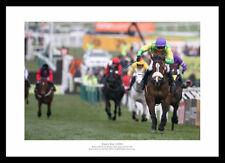 Kauto Star 2009 Cheltenham Gold Cup Winner Horse Racing Photo (883)