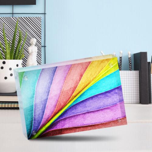 "Desk Art Office Gift #13008 Pretty Colorful Rainbow Leaf Photo Block 6 x 4/"""