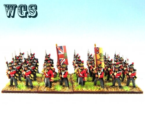 15mm Napoleonic WGS Painted British Infantry Regiment 32 figures NBA1