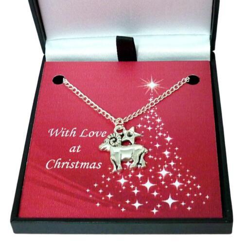 Signe Du Zodiaque Collier Bijoux en Cadeau de Noël Boîte Femmes ou Filles