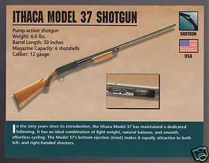 "ithaca singles over 50 America rising: ithaca's new 12-gauge phoenix shotgun written by: irwin greenstein published in: are now devoting their full measure of sweat and muscle to manufacture a new 100-percent american-built over/under shotgun code-named phoenix ""it's nice to think that we could help our brothers and sisters in america by keeping and creating new jobs,"" said ithaca."