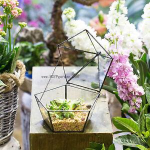 Jewel Boxed Shaped Glass Geometric Terrarium Plant Succulent Planter