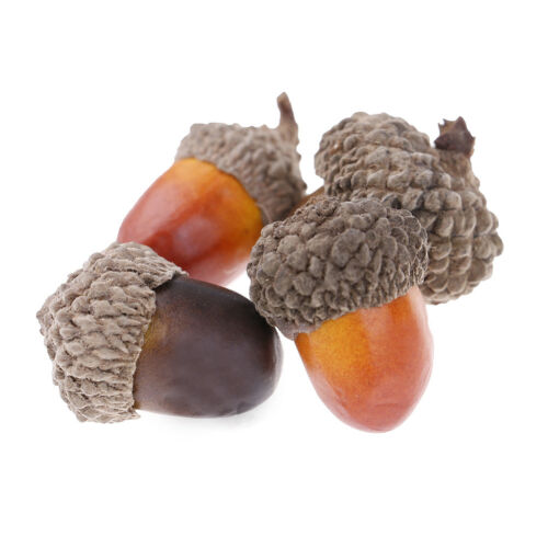 10pcs Artificial Mini Acorn Oak Foam Nut Christmas Tree Ornaments Xmas Decor NMC