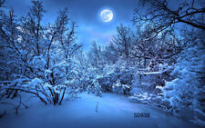 Winter Snow Xmas Vinyl Photography Backdrop Background Studio Props 7X5FT SD938