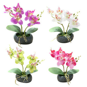 Am-New-Artificial-Butterfly-Orchid-Bonsai-Fake-Flower-Simulation-Home-Decor-Lit