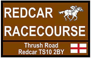 HORSE RACING TOURIST SIGNS (REDCAR) - FUN SOUVENIR NOVELTY FRIDGE MAGNET - GIFTS