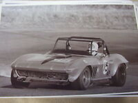 1966 Chevrolet Corvette Race Car Or Rally Car ? 11 X 17 Photo / Picture