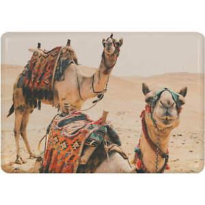 039-Desert-Camels-039-Fridge-Magnet-FM00001416