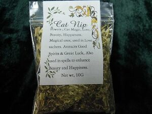 Details about Catnip herb spells herbs Spell Supplies Altar Pagan Wiccan  Incense witchcraft