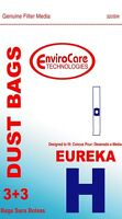 Eureka Type H Canister Vacuum Cleaner Bags + Filters 52323a