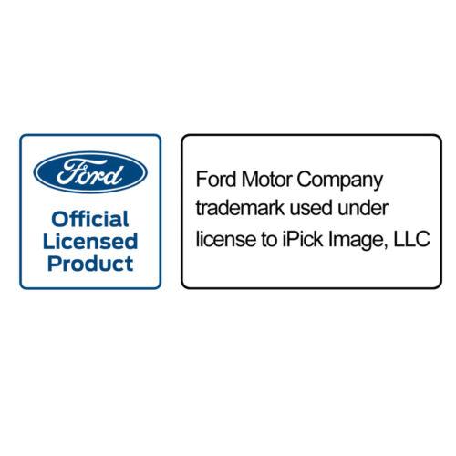 Ford Edge Rectangular Black Leather Key Chain