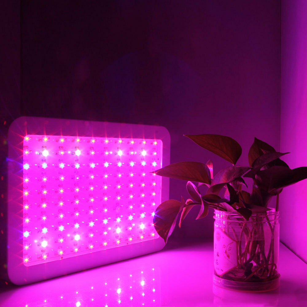 600w full spectrum led grow light hydro greenhouse plants. Black Bedroom Furniture Sets. Home Design Ideas