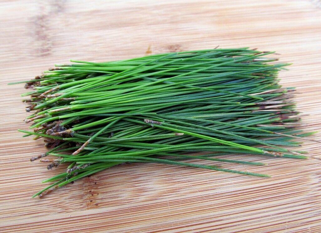 Fresh Organic Scots Scotch Pine Needles 250g 4L