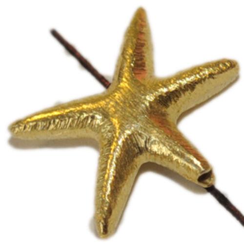 Brossé 4319-17x12 mm étoile de mer en argent 925-er doré