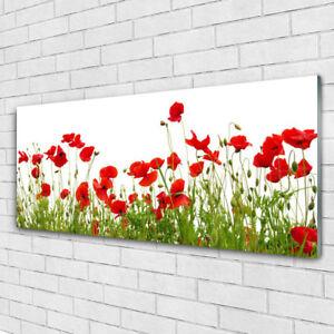 Tulup Acrylglasbilder Wandbilder Dekobild 125x50 Gänseblümchen Pflanzen