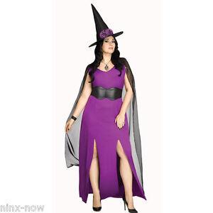 Midnight-Magic-Plus-Size-Women-039-s-Witch-Halloween-Costume