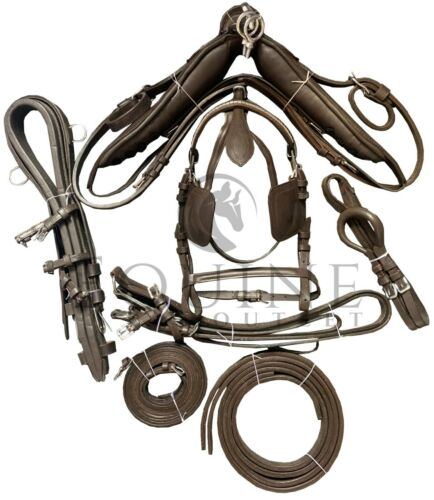 Premium Leather Horse Driving Harness with Silver Metal Fittings Black /& Brown