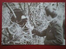 POSTCARD ROYALTY HRH THE PRINCESS ROYAL AT MARWELL ZOO 1982