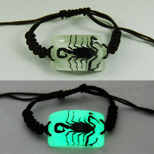 REAL BLACK SCORPION GLOW CLEAR LUCITE BRACELET BANGLE INSECT JEWELRY TAXIDERMY