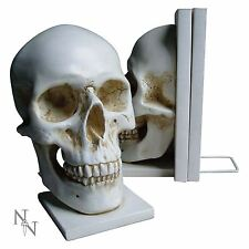 Skull Bookends Human Anatomy Medical Student Gift 17cm High Nemesis Now