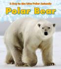 Polar Bear by Katie Marsico (Hardback, 2011)