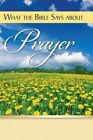 What the Bible Says about Prayer by Rose Publishing (Paperback / softback, 2015)
