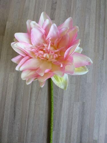 Lotus Lotus Fleur de soie fleur Art Fleur crème rose rose 73 cm 183072 f17