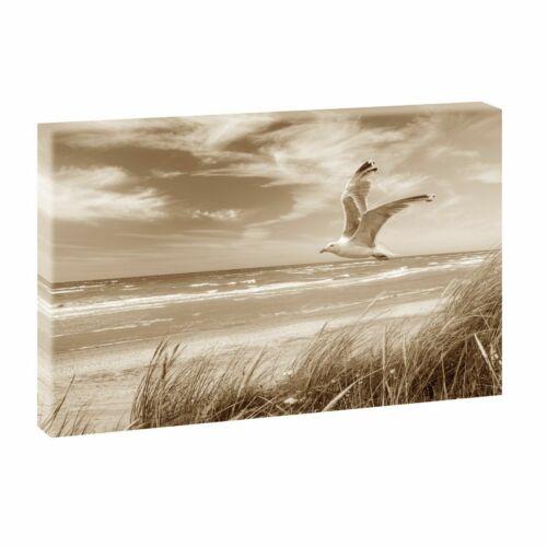Beach /& Sea North Sea Dunes Landscapes Canvas Wedge Frame Art Print 743