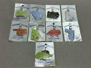 Details about 9 VTG ~ Cloisonne Enamel ~ State Souvenir Charms ~ FL SC NC  GA PA OK MA DE TN