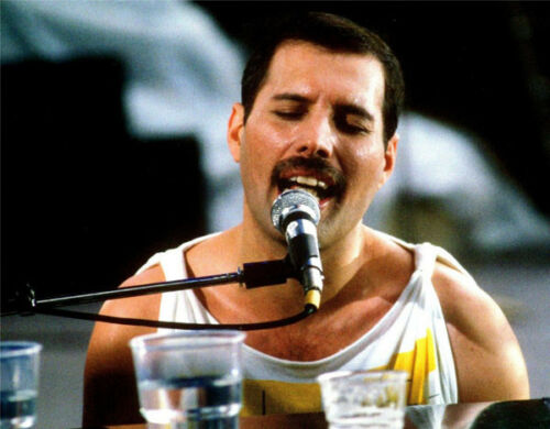 M828 NEW IMAGE! Freddie Mercury UNSIGNED photograph Lead singer with Queen