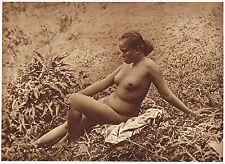1920's Old Vintage Asian Java Indonesian Female Nude Model Photo Gravure Print c