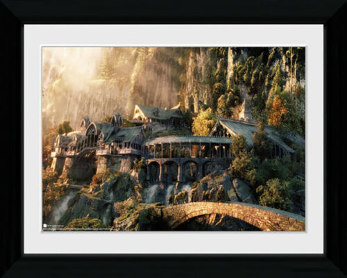 Mounted /& Framed Print Lord Of The Rings Fellowship Of The Ring