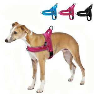 Large-Dog-Harness-No-Pull-for-Beagle-Pitbull-Small-Dog-Harness-Front-Clip-US