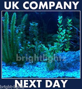 Led Strip Light Set Blue Submersible Aquarium Lights Ip68