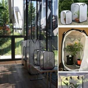 Praying-Mantis-Stick-Insect-Cage-Butterfly-Chameleon-Pop-up-Housing-Enclosure